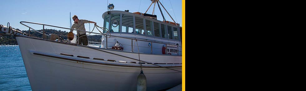 Deckhand courses Sydney and Tweed heads