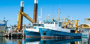 Maritime industry experiencde with no qualification